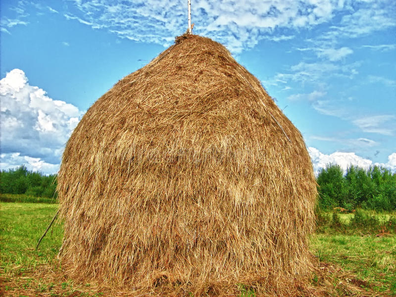 Haystacks. I remember driving through the countryside from village to village seeing lots of small haystacks. This one is much bigger! It is a peaceful image compared to the topic of sexual violence and war.